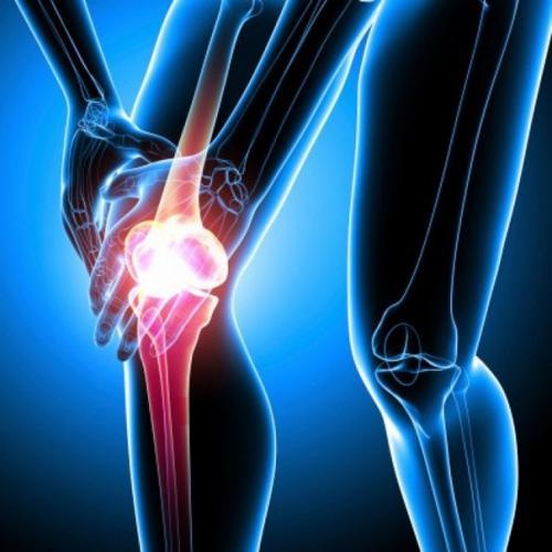 Суставы, связки и мышцы